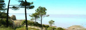 Le parc de l'estuaire de St-Georges-de-Didonne